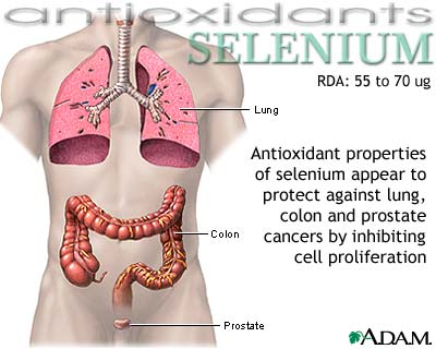 seleniumantioxidantpicture